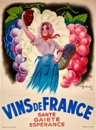 Vins De France French Wine France