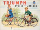 Triumph Cycles For Juniors Raleigh Industries