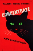 Road Safety ROSPA Concentrate Cat's Eyes Cusden