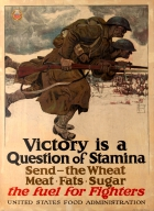 Victory Stamina WWI USA Home Front